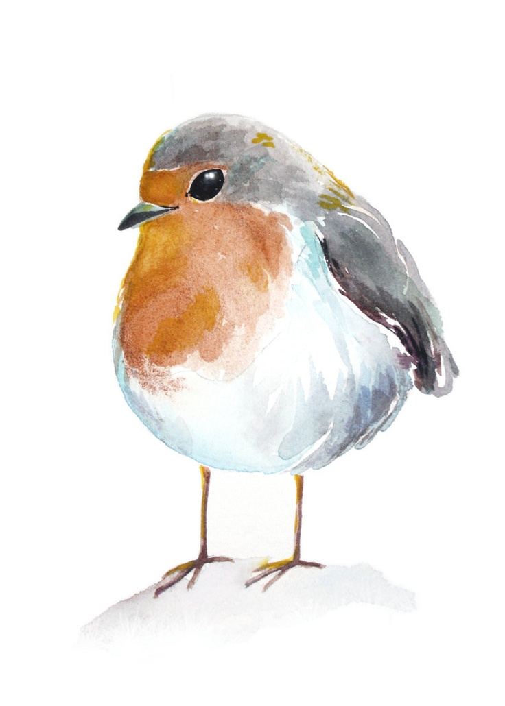 chubby robin spring watercolour art print