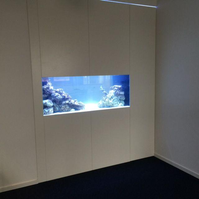 Meerwasser Aquarium Als Raumteiler In Großraumbüro #AquariumWest  Premium Aquariumbau Www.aquariumwest.de #Meerwasseraquariumpodcast #  MarkusMahl U2026