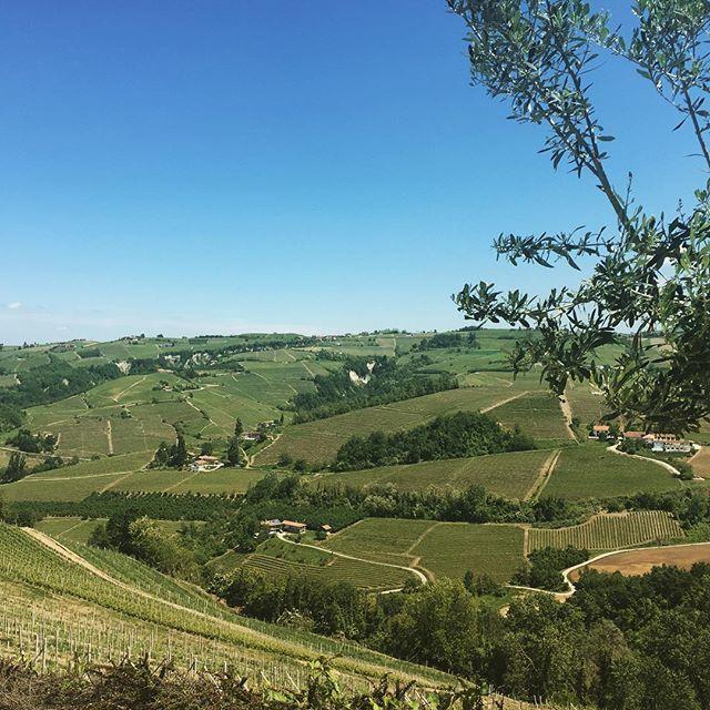 Il mio Piemonte bellissimo #pranzodifamiglia #lelanghe #vivaladomenica…