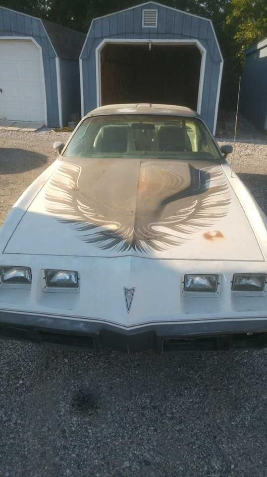 1980 Pontiac Trans Am Indy Pace car edition (Camp Hill, Pa