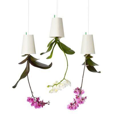 Du suchst noch ein Geschenk für einen Pflanzen-Fan? Der Sky Planter wird für ungläubiges Staunen sorgen – denn mit ihm hängt die Pflanze kopfüber von der Decke. via: www.monsterzeug.de