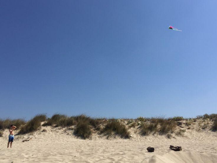 Spätsommerwind: Drachenfliegen leicht gemacht