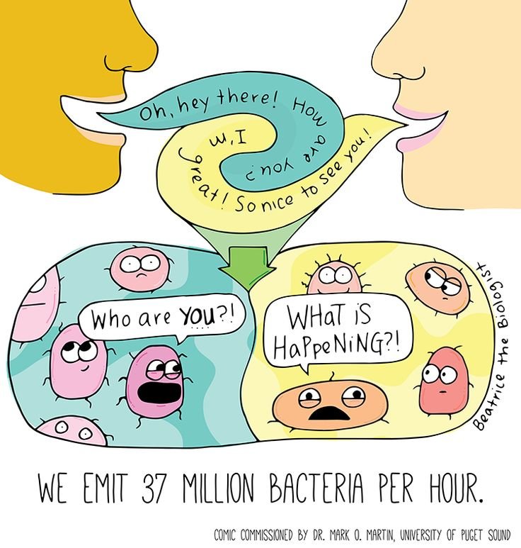 Beatrice the Biologist: Bacteria Breath