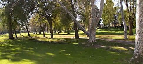 Los Feliz Muni Golf Course . . . This Place is my Temple