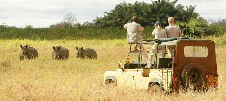 Plan for #KenyaSafariHolidays and be a part of the tranquil nature. Know more @ http://kenya-safaris.co/on-safari/