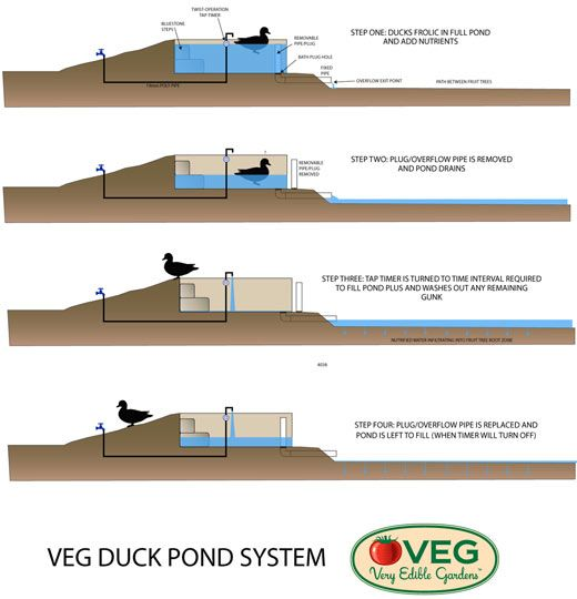 Veg design solutions part three how to drain a duck pond for Garden pond overflow design