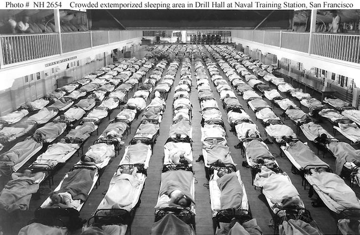 the influenza epidemic of 1918 killed as many as 100 million people or 6% of the world's population