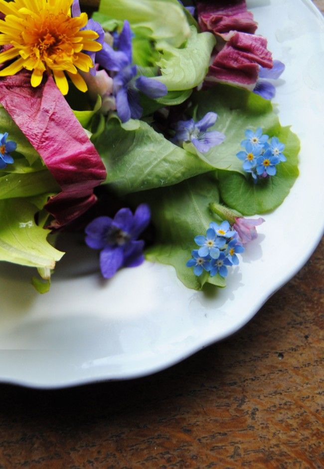 The Good guide to: Edible flowers   Good Magazine