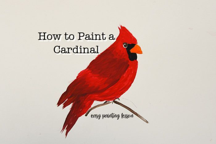 Paint A Cardinal In Acrylics Canvas Painting Tutorials Easy Art