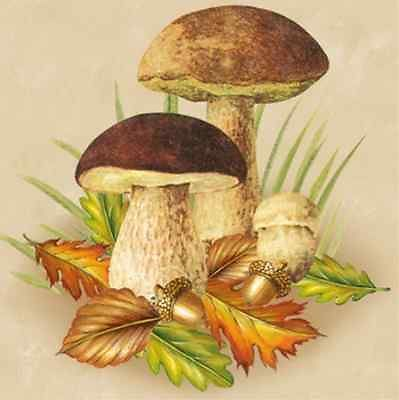 mushrooms for decoupage - Pesquisa Google