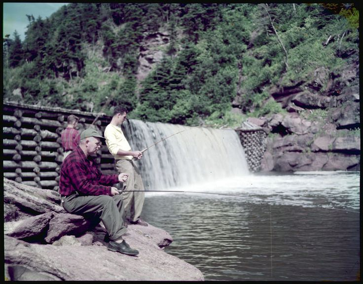 Leo J. Lyons and sons, Joseph and Richard of Quincy, Massachusetts, fishing at Point Wolfe River, Fundy National Park / Leo J. Lyons, de Quincy (Massachusetts), pêche avec ses fils Joseph et Richard dans la rivière Point Wolfe, au parc national Fundy | by BiblioArchives / LibraryArchives