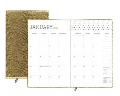 Gold Luxe Mini Planner 2015 - Sugar Paper Gold Swiss Dot Weekly/monthly Planner Sugar Paper