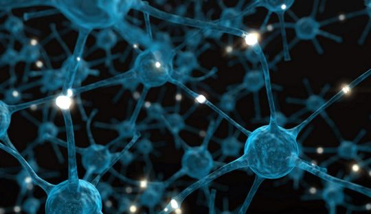 Post image for Drug Reverses Schizophrenia in Mice by Curbing Synaptic Pruning