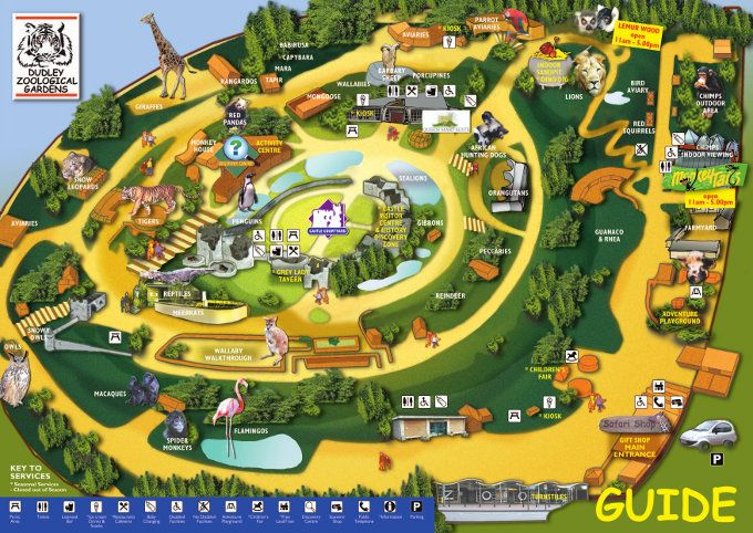 dudley zoo   maps   pinterest   zoos and castles
