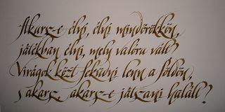 Kallinapló by Buzogány - nyugati kalligráfia - : Könyv... Kézírások