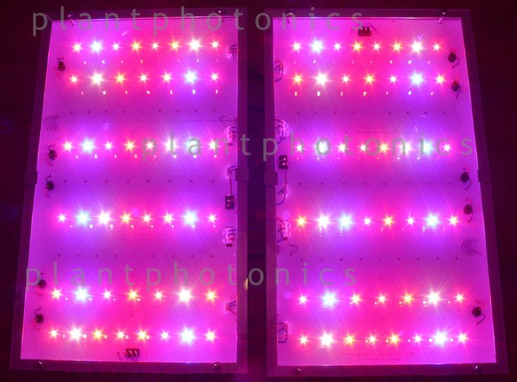 280 watt grow led light plantphotonics best led grow lights. Black Bedroom Furniture Sets. Home Design Ideas