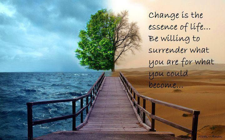 """""""Change is the essence of life; be willing to surrender what you are for what you could become.""""  ― Reinhold Niebuhr #ChangeAnything"""