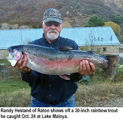 1000 images about fresh water fish on pinterest catfish for Fish and game stocking report