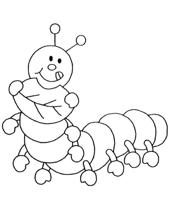 The Very Hungry Caterpillar Printable Coloring Pages Insect Coloring Pages Butterfly Coloring Page Lion Coloring Pages