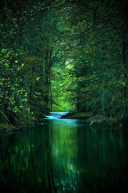 .Breathtaking. I want to live by this stream, in those woods.