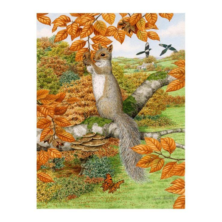 garden flag stands. 2757 Best Squirrel!!! Images Squirrel Garden Flag Stands