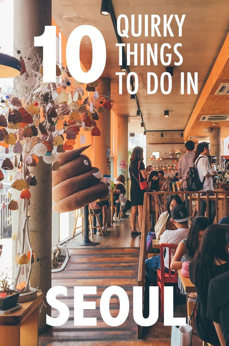 Read on for some of our favorite quirky things to do in Seoul! Hint hint, one of them involves poo.