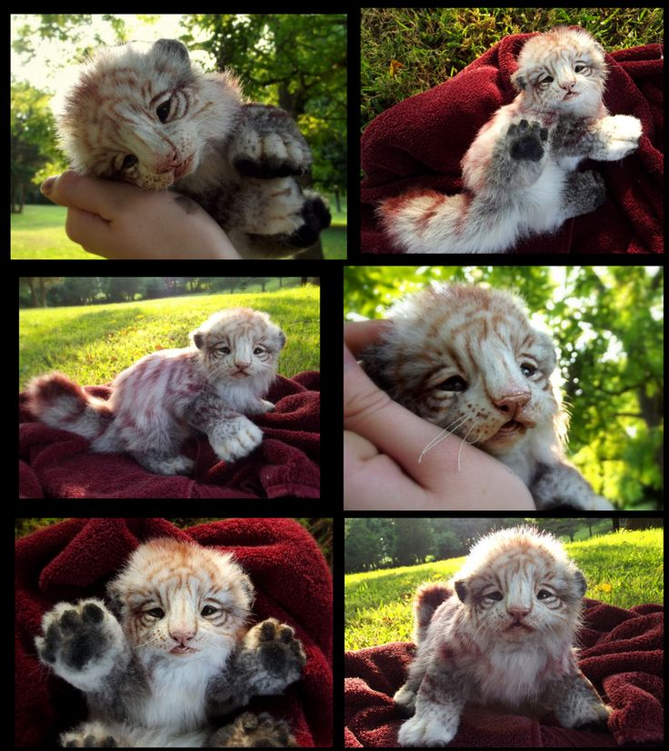 SOLD HAND MADE Poseable Baby Siberian Tiger Cub! by Wood-Splitter-Lee.deviantart.com on @deviantART