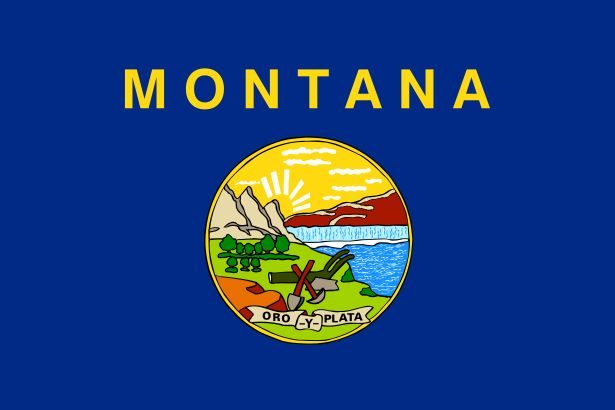 "Under the word ""Montana"", on a blue field, is the state seal. The seal shows some of Montana's beautiful scenery and tells what people were doing in pioneer times. The pick, shovel and plow represent mining and farming. In the background a sun rises over mountains, forests and the Great Falls of the Missouri river. A ribbon contains the state motto ""Gold and Silver""."