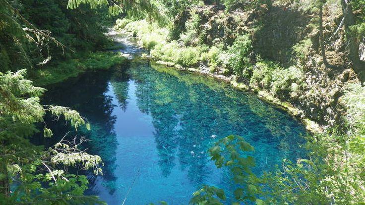 17 Best Images About Swim Pnw On Pinterest Swim Washington And Lakes