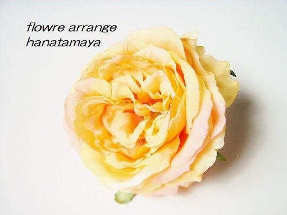 【フラワーアレンジ作品】【作品について】サーモンピンクを施したオレンジのバラを使い、コサージュを作りました。シンプルな一輪の大き目のコサージュです。裏には、ク...|ハンドメイド、手作り、手仕事品の通販・販売・購入ならCreema。