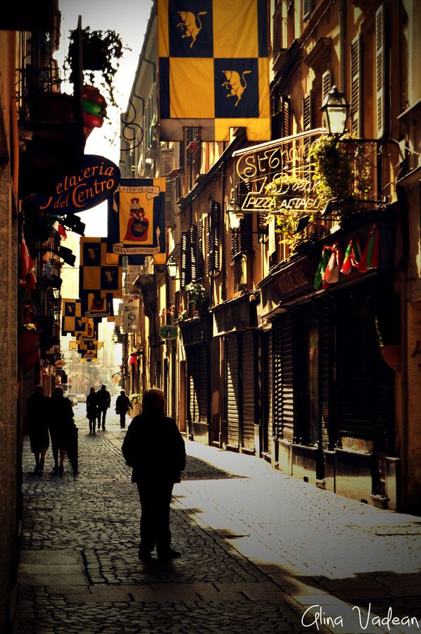 Turin (Italy ) Quiet street in Turin by Alina Vadean on 500px