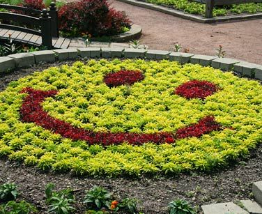 Our smiley face is sure to bring a smile to young and old alike.: Garden Ideas, Smile Face, Happy Face, Smiley Pie, Smiley Faces