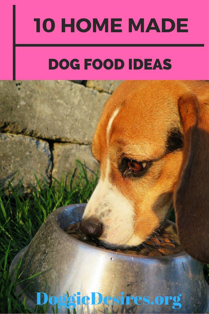 10 homemade dog food ideas