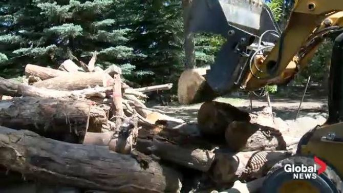 2013 Alberta flood cleanup | Flood cleanup underway at Prince's Island Park - Calgary ...