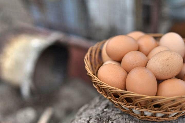 Vajíčka sú zdravé, obsahujú veľa vitamínov, bielkovín a aj prospešný cholesterol. Pozri si tipy, ako vajíčka najlepšie spracovávať.