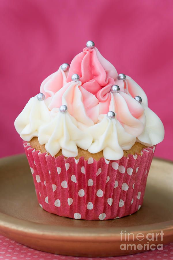 Cupcakes are a little bit of heaven wrapped in a perfect serving size.