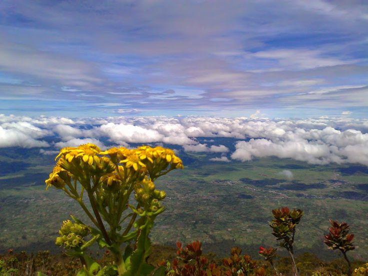 Kerinci Summit: Kerinci Volcano