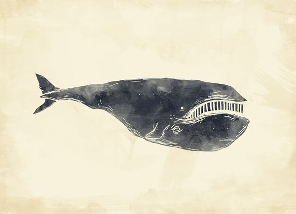 70 best art images on pinterest etchings graphics and for Alex cherry flying whales wall mural