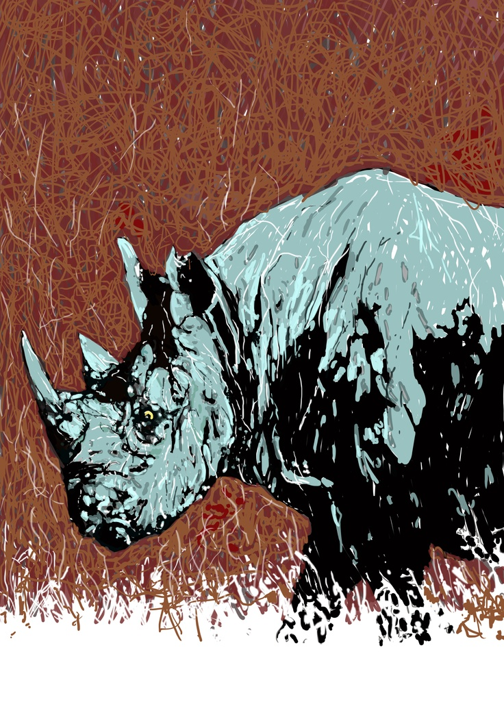93 Best Rhino Art Crafts And Collectibles Images On