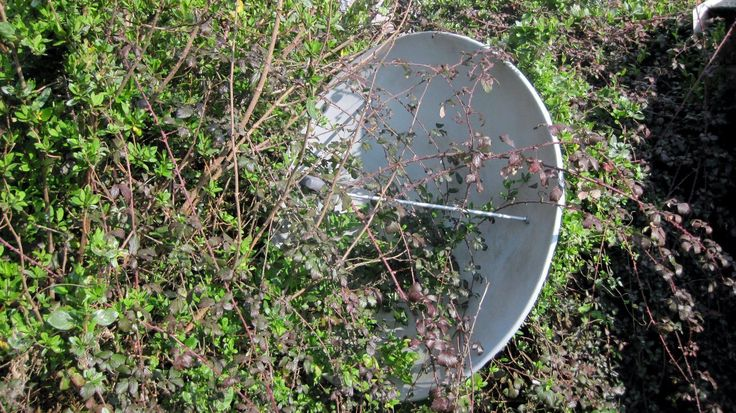how to get satellite tv with an old dishes