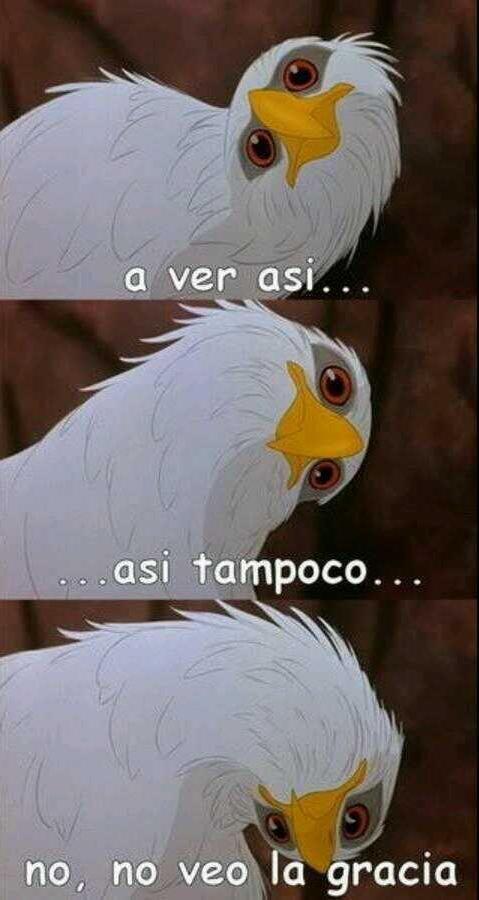 ME: -como el pajaro- oie ___ no le veo la gracia :U  ___: nmms :V