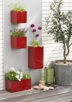Wall mounted planters?  Great look