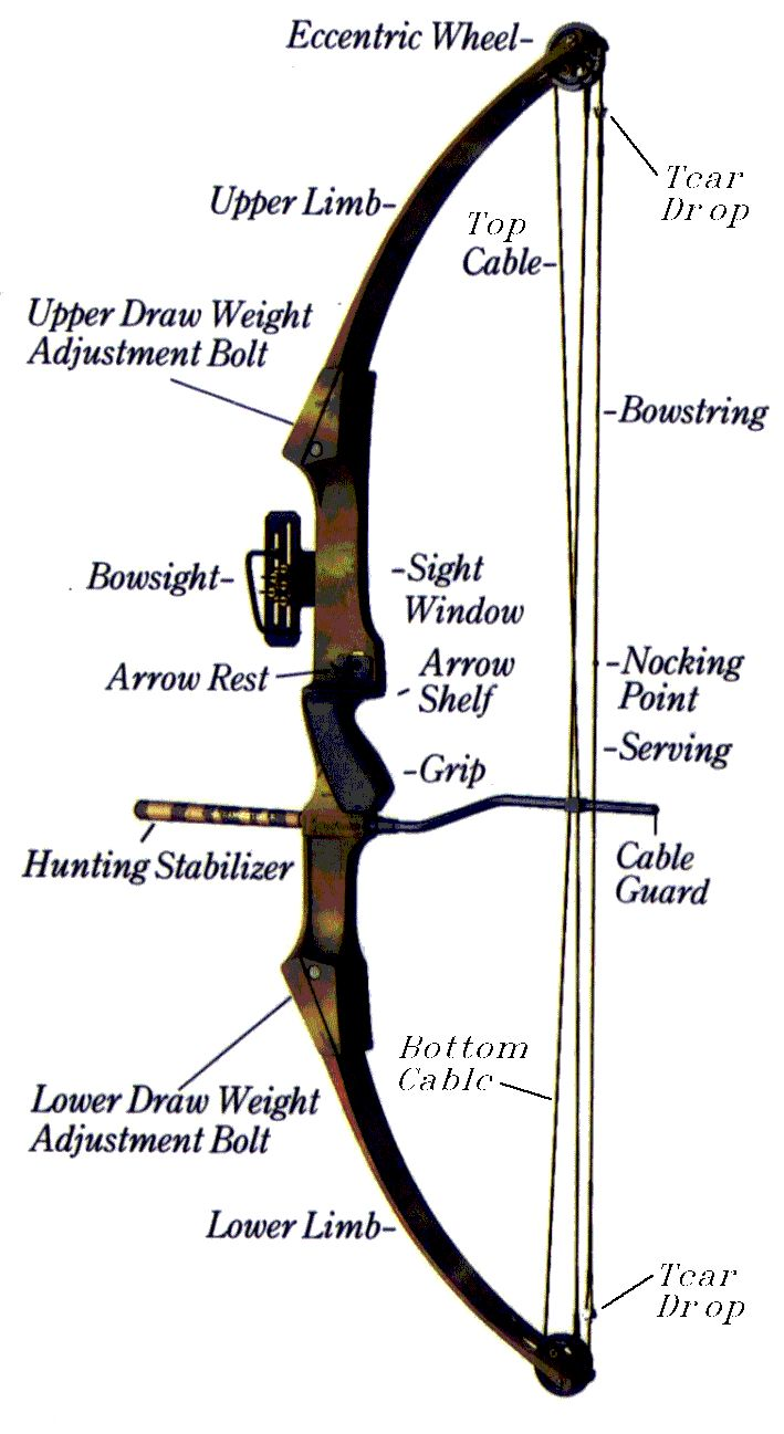Wonderfulpound Bow Diagram And A Great Site For Archery
