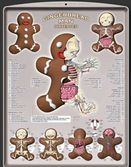 Inanimate Anatomy - Moist Productions Shows the Inner Workings of Gingerbread (UPDATE) (GALLERY)