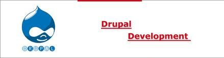 The company has a lot of other branches as well. One branch is in Manchester and the company is named as Drupal Development Manchester.