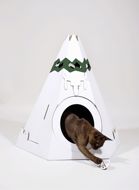 card board cat houses