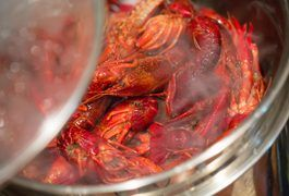 More than 30 species of freshwater crawfish live in Louisiana and other parts of the South, and with an availability of fresh crawfish from December to July, these small crustaceans can stand on their own or compliment a number of dishes, including etouffee, cheese enchiladas, baked potatoes and bisque. Crawfish are an excellent source of B...