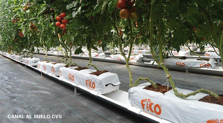 Las Canaletas de Drenaje para la agricultura hidropónica son una solución innovadora que permite reducir costes y obtener una cosecha de mejor calidad
