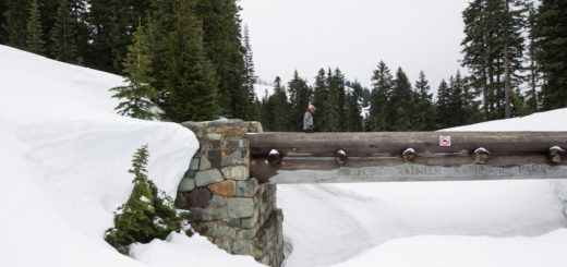 Chinook Pass - News, weather, conditions for Chinook Pass and Mount Rainier National Park Chinook Pass News 24 Mar, 2017 State Route 410 over Chinook Pass set to open on time