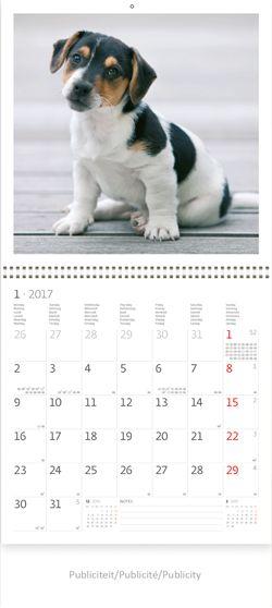 Muurkalender 60x60 Honden 13P - Praktische fotokalender Blad met 300 stickers bijgeleverd om bijzondere dagen aan te duiden Veel ruimte bij het dagcijfer voor notities Met stevig karton zodat het boorgaatje niet kan doorscheuren